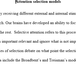 attention selection theories