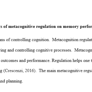 metacognitive regulation